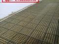 赣州2公分蓄排水板&车库绿化排水板15805385945