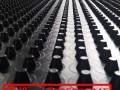 铜陵地下室排水板-销售丨合肥车库隔根板